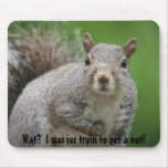 Wat? Squirrel Mouse Pad