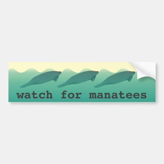 Watch for Manatees bumper sticker