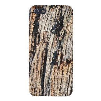 Watch For Splinters Wood Case