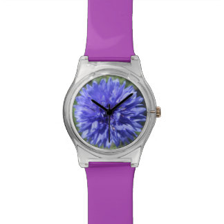 Watch - May28th - Cornflower Blue Bachelors Button
