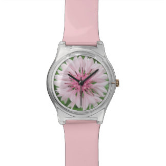 Watch - May28th - Pink/Pink Bachelor's Button