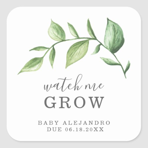 Watch Me Grow Rustic Elegant Greenery Baby Shower Square Sticker