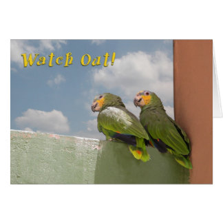 Watch Out Birthday Greeting Card