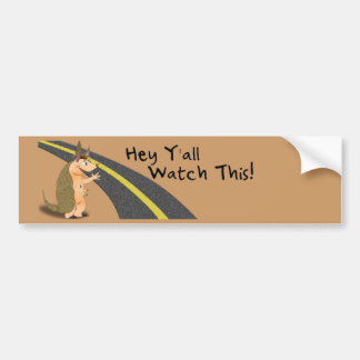 Watch This! Armadillo bumper sticker Car Bumper Sticker
