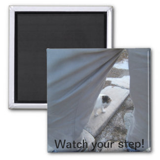 Watch Your Step Magnet
