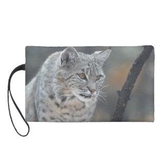 Watchful Bobcat Wristlet