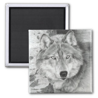 Watchful Eyes Wolf Magnet