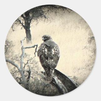 Watchful Hawk Classic Round Sticker