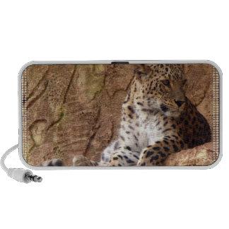 Watchful Leopard Speakers