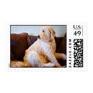 Watchful Stamps