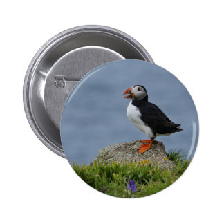 Watchful Puffin Pinback Buttons