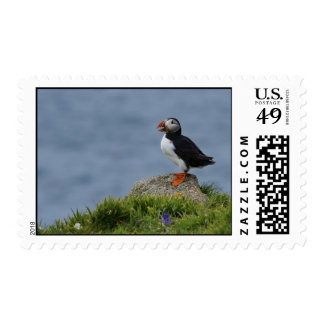 Watchful Puffin Postage