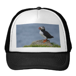 Watchful Puffin Trucker Hat