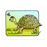 Watchful Turtle Post Card