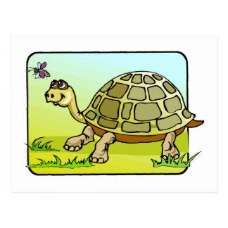 Watchful Turtle Postcard