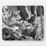 watchful wolf mouse pads
