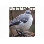 Watchin' You Postcard