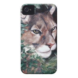Watching Cougar BlackBerry Bold Case