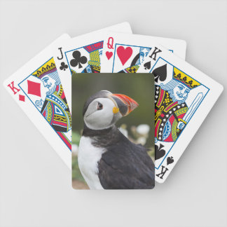 Watching his Back Puffin Bicycle Playing Cards
