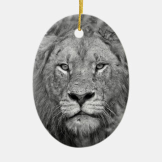 Watching Lion, South Africa Ceramic Ornament