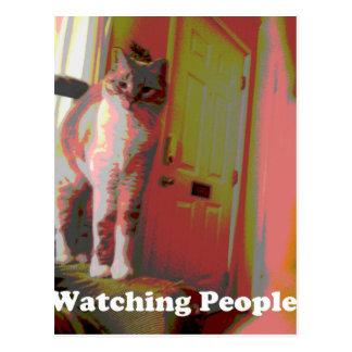 Watching People Cat Postcard