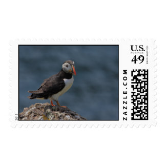 Watching Puffin Postage