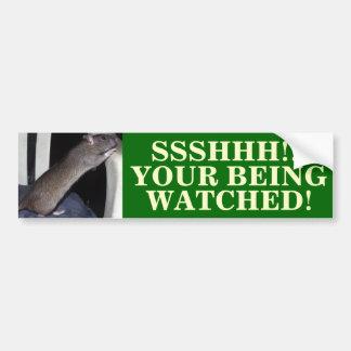 WATCHING RAT BUMPER STICKER