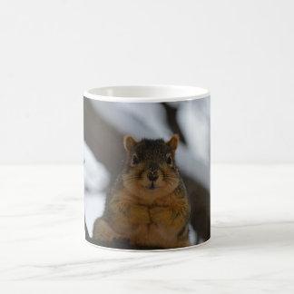 Watching Skwerl coffee mug