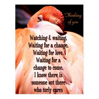 Watching & Waiting_ Post Card