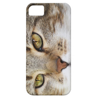 Watching you… iPhone 5 cover