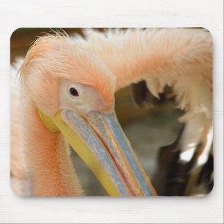 Watching You Pelican Mousepad