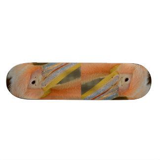 Watching You Pelican Skateboard