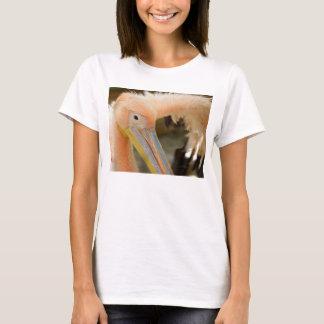 Watching You Pelican Women T Shirt