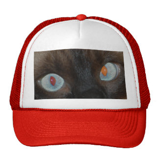 watching you trucker hat