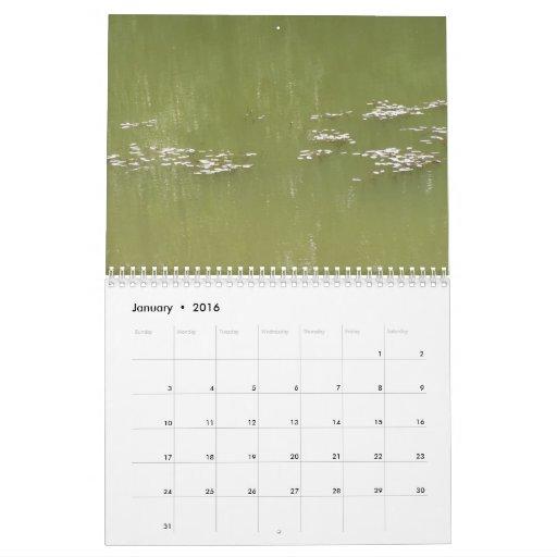 WATER 2012 Calendar