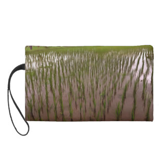 Water and paddy field wristlet