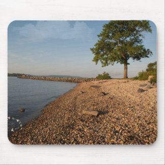 Water Bank Mouse Pad