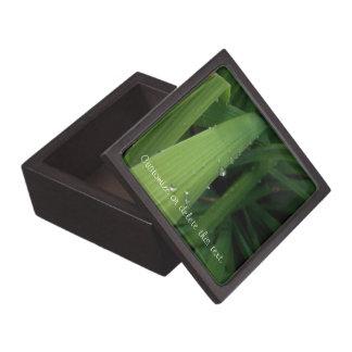 Water Beads on Grass; Customizable Jewelry Box