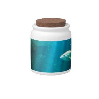 Water Beam Candy Jars