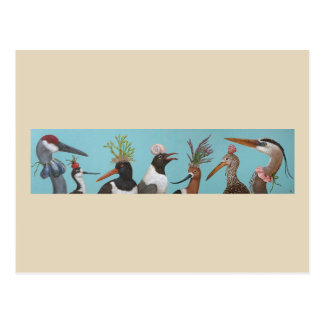 Water Birds postcard