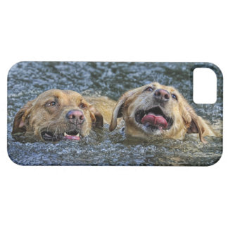 Water Bliss Labs iPhone SE/5/5s Case