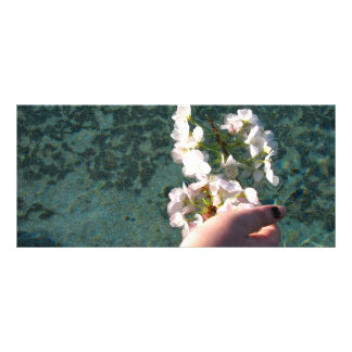 Water Blossoms Rack Card