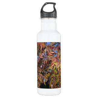 Water Bottle: Colorful Autumn Pinnate Leaves Stainless Steel Water Bottle