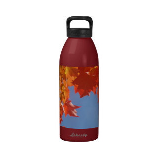 Water Bottles promotional Colorful Autumn Leaves