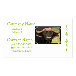 Water Buffalo Business Cards
