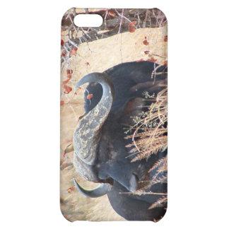 water buffalo iPhone 5C case