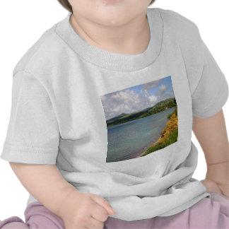 Water Coast Countryside At Summer Tee Shirts