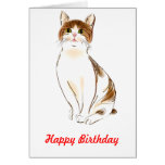 Water Color White & Orange Staring Cat Greeting Cards