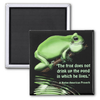 Water Conservation Earth Day Green Frog Magnet
