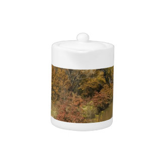 WATER CONTROL DAM AND AUTUMN TREES TEAPOT